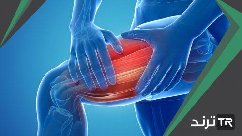 حزمة سميكة من الانسجة تصل العضلات مع العظام