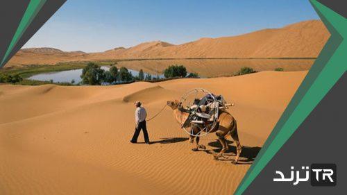 لماذا يسود المناخ الصحراوي في معظم أجزاء وطني
