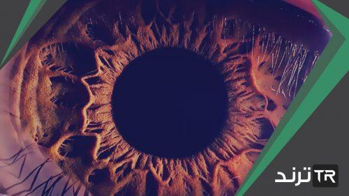 أي جزء من العين يتجمع عليه الضوء