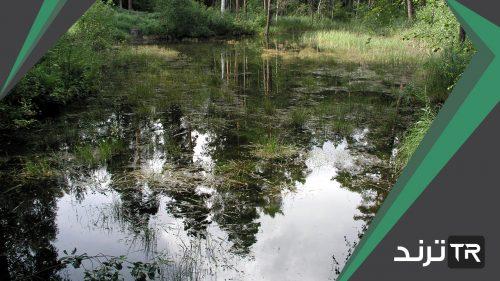 المياه السطحية هي المياه التي تعلو سطح الارض ولا تحتاج الى جهد لاستخراجها مثل العيون والاودية