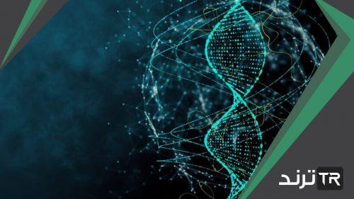 عدد السلاسل في الحمض النووي dna